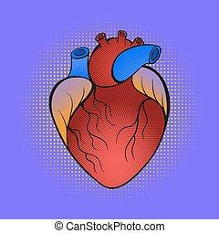 heart., knall, hand, vektor, abbildung, gezeichnet, kunst