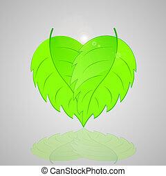 heart., kształt, liście, zielone tło, świeży