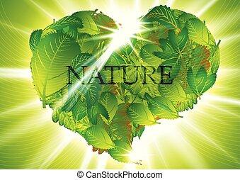 heart-leaves, verde