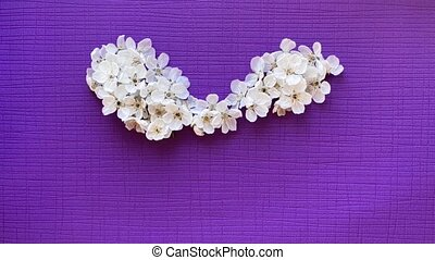 Heart made of cherry flowers. Stop motion animation.