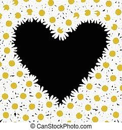 Heart made of daisy flowers