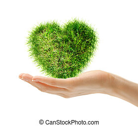 Heart made of green grass in hand