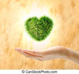 Heart made of green grass on hand