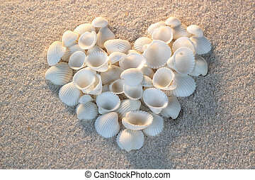Heart made of sea shells lying on a beach sand summer background