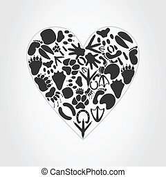Heart of an animal