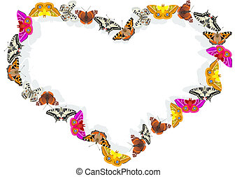 Heart of butterflies