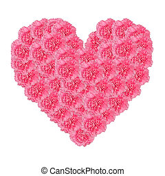 Heart of carnation flower isolated on white background