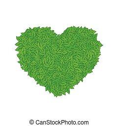 Heart of green leaves