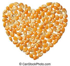 Heart of Popcorn kernels isolated on white background