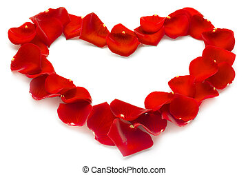 heart of red rose petals on white background