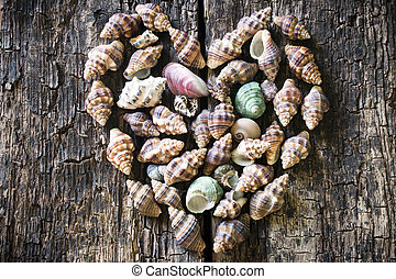 Heart of seashells on a wooden background