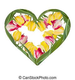 Heart of Tulips on White. EPS 10