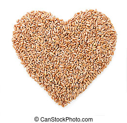 Heart of wheat isolated on white background