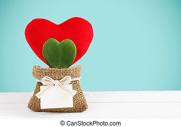 Heart plant with red heart decoration