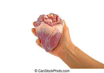 heart pork in hand isolated on white background
