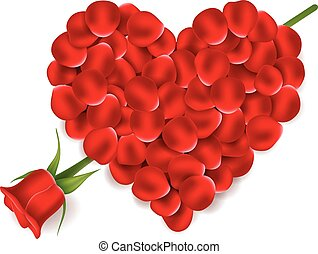Heart red petals with flower rose