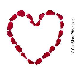 heart shape rose petals flower love valentine day