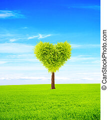 Heart shape tree on green field