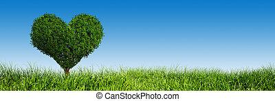 Heart shape tree on green grass field. Love symbol, panorama, banner.