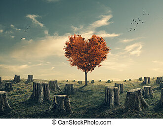 Heart shaped tree in cleared forest