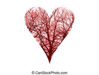Heart Symbol Blood Vessels - Close up human blood vessels in...