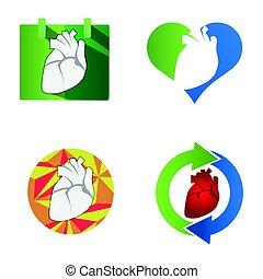 Heart Symbol. Human Organ Icon