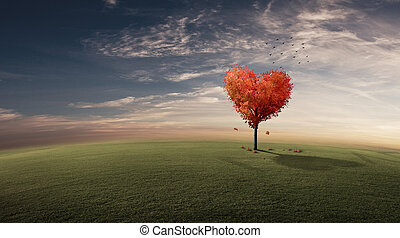 Heart shaped tree on grassy field