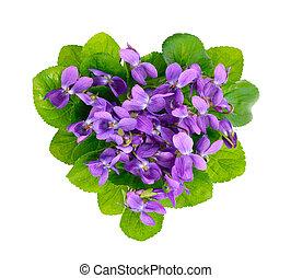 heart., violetas