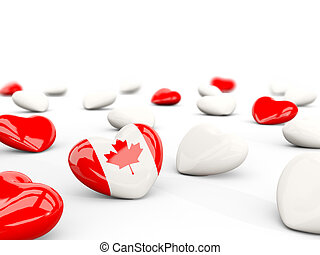 Heart with flag of canada isolated on white