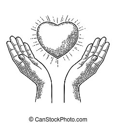 Heart with rays in open female human palms. Vector black vintage engrav