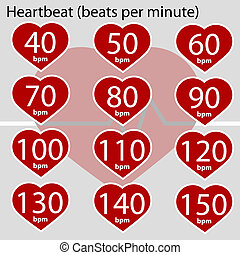 Heartbeat infographic