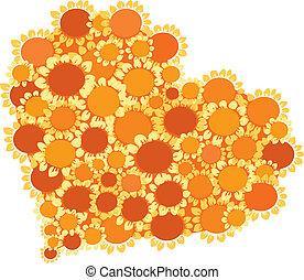 hearth of sunflowers