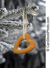 Heartshape cookie hanging on the tree. Winter. - Heart shape...