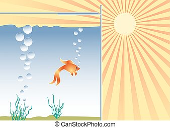 Goldfish in the aquarium in good conditions.