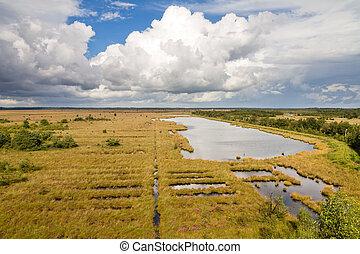 heathland, ansicht