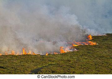 Heathland Fire - Severe heathland fire in Dorset, UK