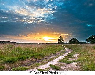 Heathland Trail Sunset