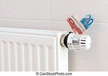 Heating coasts - Heating thermostat with euros, expensive...