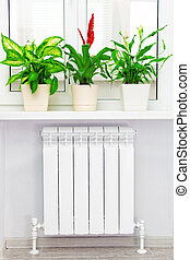 Heating white radiator with flower and window. - Heating...