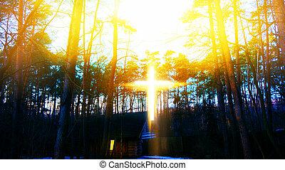 heavenly, 交差点, 森林, 家