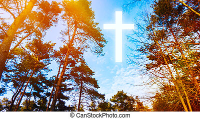 Heavenly Cross . Religion symbol shape .
