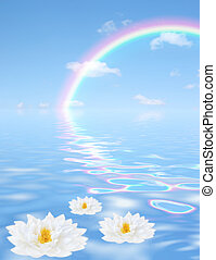 Fantasy abstract of a blue sky, rainbow and clouds with reflection in tranquil rippled blue water with three white lilies floating in the foreground. (Gladstoniana genus.)