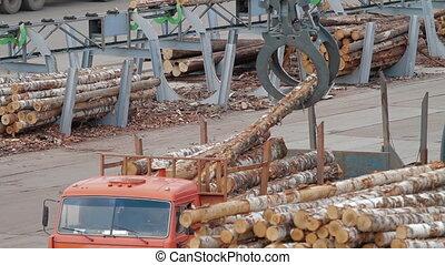 HEAVY EQUIPMENT TRUCKS LOADER AND PICKER - Lumber industry...