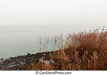 Heavy fog on the lake in the autumn morning