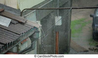 Heavy Rain In City Yard