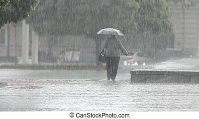 Heavy Rain in the City Park