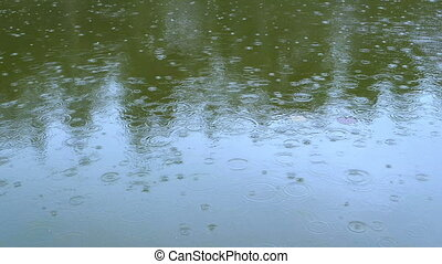 Heavy rain in the street early afternoon - Closeup shot of ...