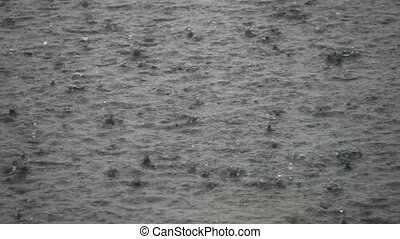 Heavy rain on the lake. - A heavy rain pounds the lake...