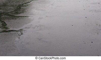 Heavy rain on the street. Summer thunderstorm