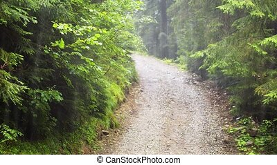 Heavy rain falls on a graded, gravel road through the forest in the Carpathian Mountains of Ukraine. FullHD stock video with sound.
